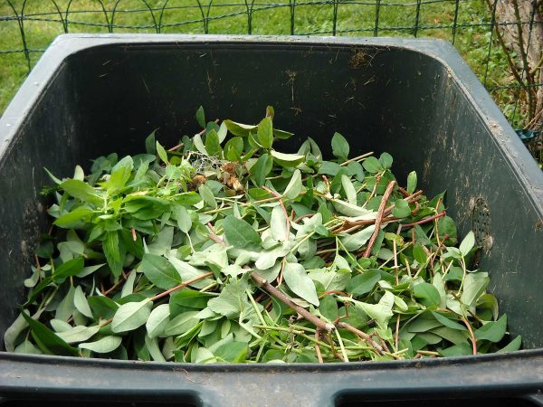 Garden Waste Collection Process Review