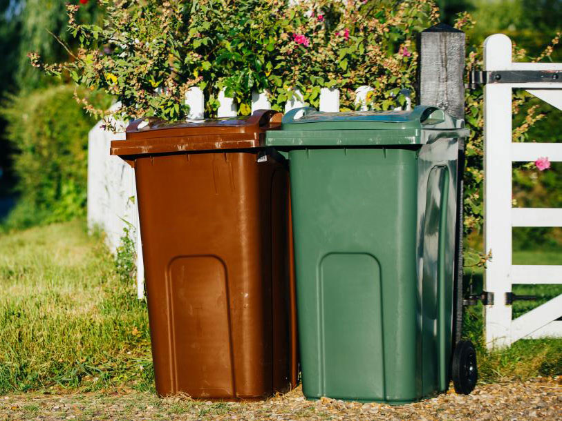 Brown and green wheelie bins