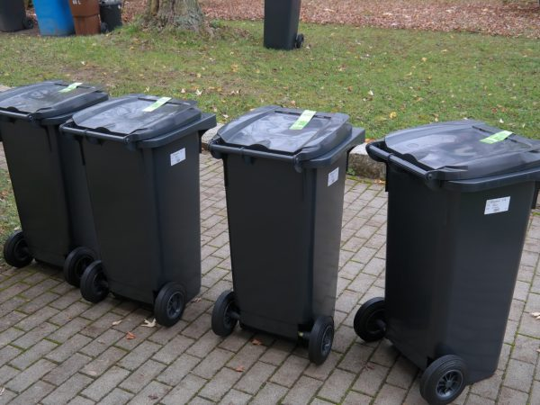 Garden and Bulky Waste Online Forms User Testing