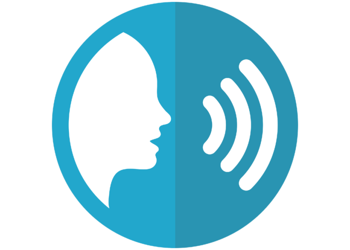 Voice in Local Government-Smart Speaker Uses